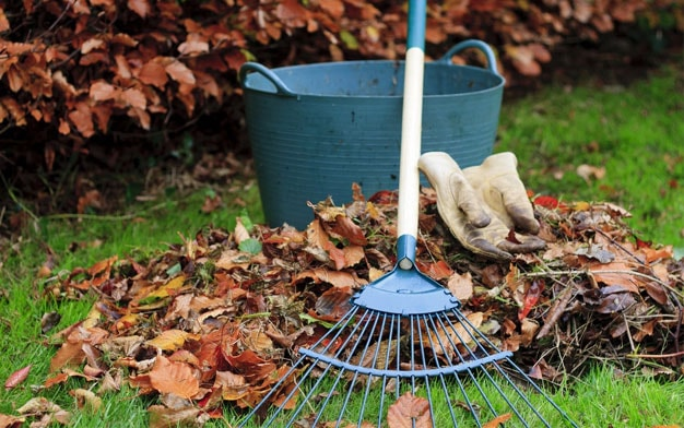 Garden Maintenance by Urban DIY London